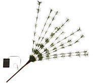 Bethlehem Lights Long Needle Sprig - H215755