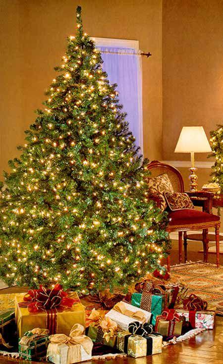 Qvc Christmas.Bethlehem Lights Pre Lit Christmas Tree Qvc Com