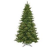 8-1/2 Camdon Fir Tree by Vickerman - H155156