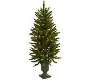 4 Christmas Tree with Urn & Clear Lights by Nearly Natural - H302657