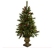 4 Christmas Tree with Pine Cones in Urn by Nearly Natural - H302659