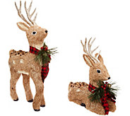 Set of 2 Glistening Sisal Deer with Ribbon by Valerie - H216560