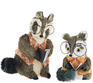 Set of 2 Sisal Racoons with Reading Glasses by Valerie - H214961