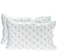 MyPillow Classic Set of 2 Std/Q Pillows w Color Cording - H208864