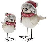 Plow and Hearth Set of 2 Oversized Standing Holiday Birds - H215965