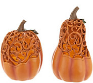 Illuminated Carved Pumpkin and Gourd Set with Timers by Valerie - H216465