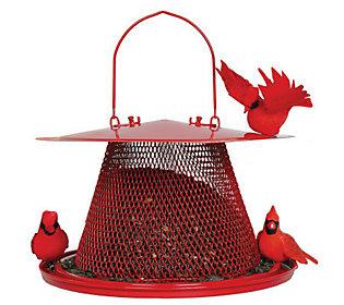No/No Cardinal 2.5 lb Bird Feeder in Red (H349765 No/No Bird Feeder) photo