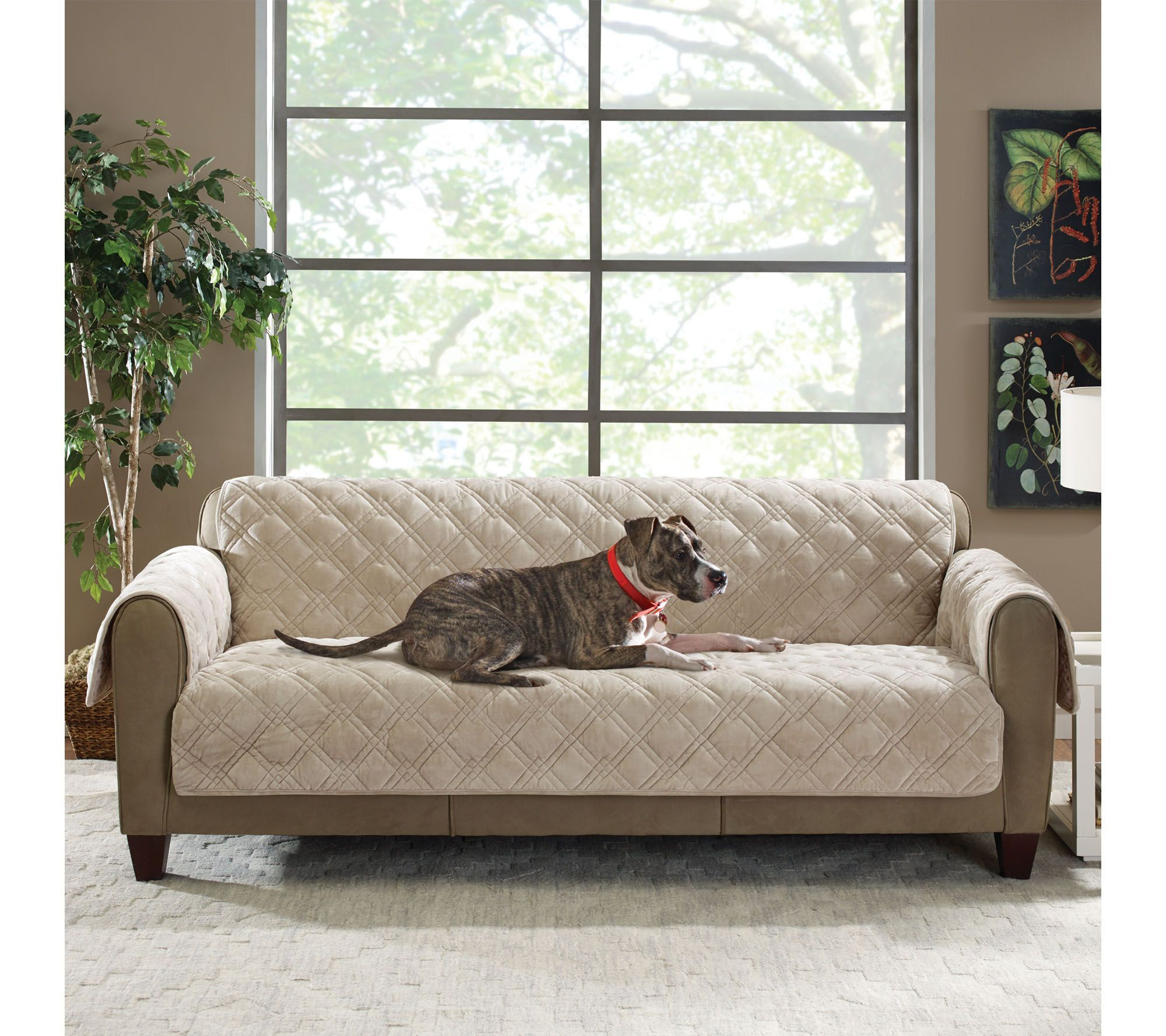 Sure Fit Plush fort Sofa Furniture Cover Pockets & Non Skid