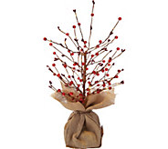 Bethlehem Lights 18 Lit Beaded Berry Branch Tree w/Burlap Base - H211966