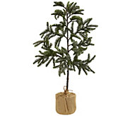 3 Iced Pine Tree with Burlap Base by Nearly Natural - H302667