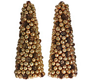 As Is Set of 2 Berry Pinecone Trees by Valerie - H210768