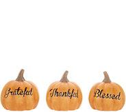 Set of 3 Autumnal Message Pumpkins by Valerie - H216168