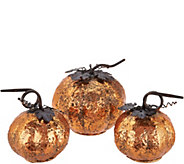 Set of 3 Graduated Metal Pumpkins by Valerie - H211569