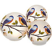 Set of 3 Illuminated Spheres with Bird Design by Valerie - H218069