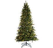 Bethlehem Lights 7.5 Prelit Noble Spruce Tree w/ Multi-Functions - H209270