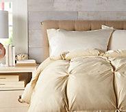 Charisma 400TC Pintuck King Comforter w/ Baffle Box - H213071