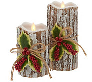 Candle Impressions Mirage Gold S/2 Winter Bark Candles - H216671