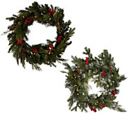 Scott Living 24 LED Color Flip Green or Snow Dusted Wreath - H213272