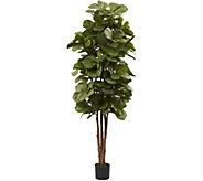 6 Fiddle Leaf Fig Tree in Black Planter by Nearly Natural - H295174