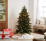Casa Zeta-Jones 5 Douglas Fir LED Function Frosted Tree - H216275