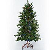 As Is ED On Air Santas Best 5 Rustic Spruce Tree by Ellen DeGeneres - H211078