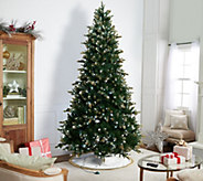 Casa Zeta-Jones 9 Doulgas Fir LED Function Frosted Tree - H216278