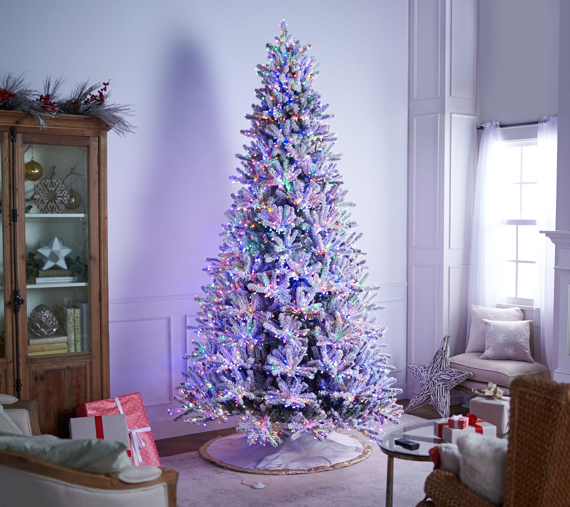 buy popular 094f0 69bbb Santa's Best Starry Light 9' Flocked Multi-Function Microlight Tree —  QVC.com
