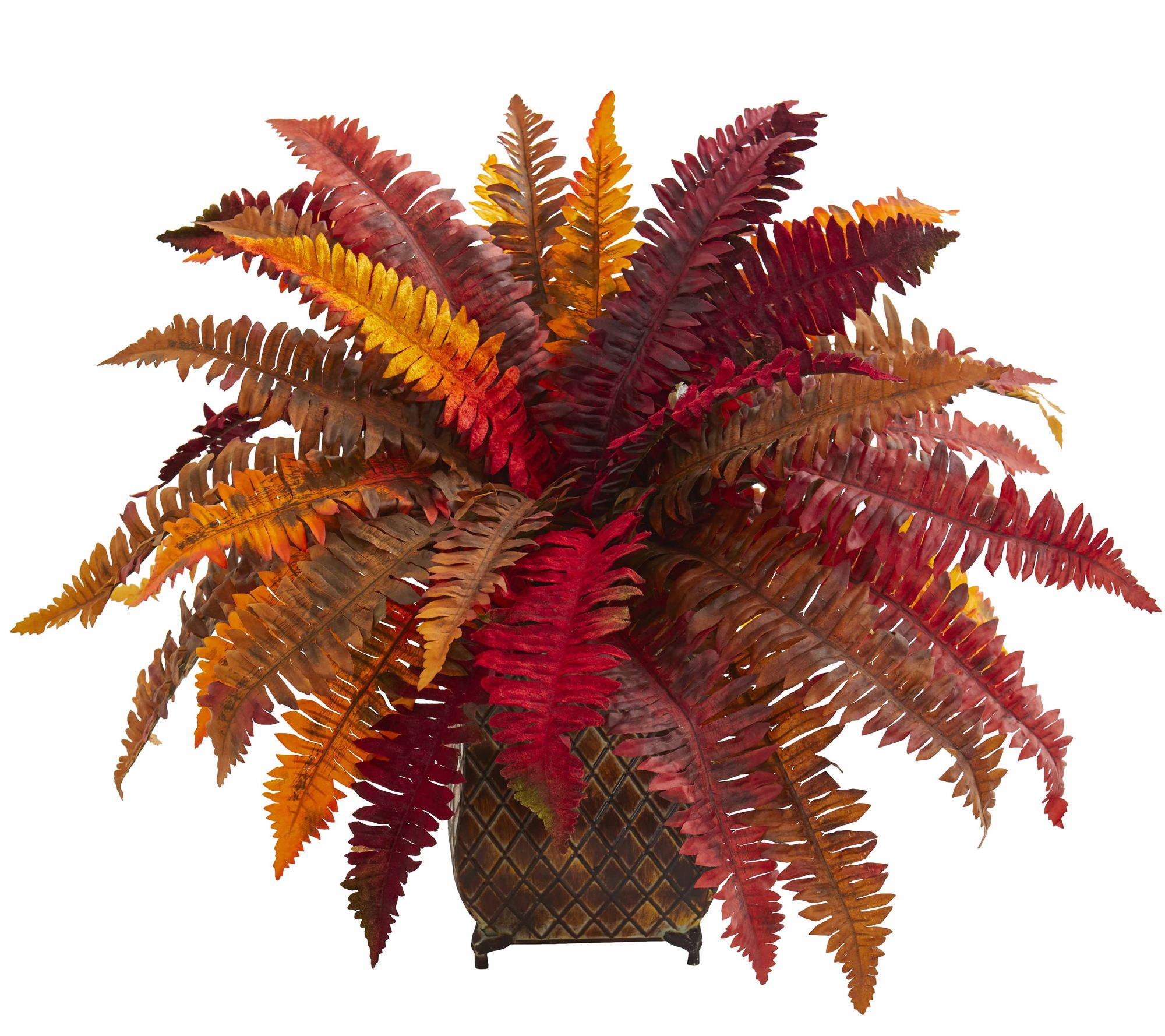 Autumn Boston Fern Plant In Planter By Nearly Natural Qvc Com