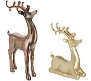 Scott Living Indoor/ Outdoor Standing or Kneeling Reindeer - H216681