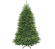 National Tree Company 6.5 Dunhill Fir Tree - H303281