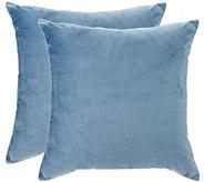 Sure Fit Plush Comfort (2) 18 x 18 Decorative Pillows - H209782