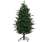 As Is Santas Best 5 RGB 2.0 Green Balsam Fir Christmas Tree - H210282
