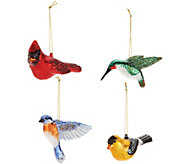 David Dangle Home Collection S/4 Blown Glass Bird Ornaments w/Satin Box - H211483