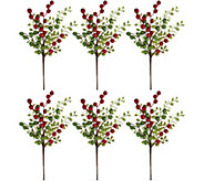 Set of 6 Decorative 14 Glitter Berry Picks by Valerie - H211683