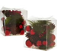 Set of 2 Decorative Mixed Filler Boxes by Valerie - H211883