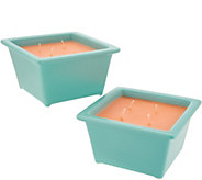 HomeWorx by Harry Slatkin Set of 2 Drop-In 9-oz Candles - H214483