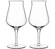 Luigi Bormioli Birrateque 14.25-oz Beer TesterGlasses - H291584