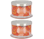 HomeWorx by Harry Slatkin Set of 2 Autumn Pumpkin 4-Wick Candles - H216986