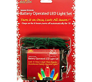 Set of 2 Battery Operated 20-Light Mini LEDs -Multicolored - H363088