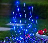 Exhart Indoor/Outdoor LED Branch Light - H287489