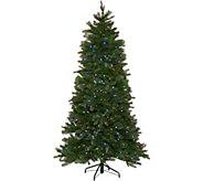 Santas Best 6.5 Green 137 Function LED Smart Tree - H212891
