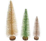 Martha Stewart Set of 3 Oversized Bottlebrush Trees - H217592