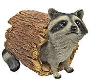 Design Toscano Bandit Raccoon Statue - H300592
