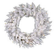 30 White Sparkle Spruce Wreath w/ Clear Dura-Lit Lights - H364092