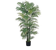 6 Areca Palm Tree by Nearly Natural - H162294