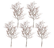 Set of 5 24 Frosted Twig Branch Sprays by Valerie - H206894
