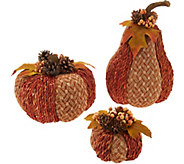 Set of 3 Woven Pumpkins and Gourds by Valerie - H211494