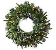 30 Cashmere Pine Wreath with Dura-Lit Lights by Vickerman - H281895
