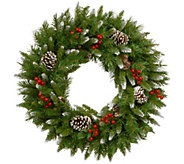 National Tree Company 24 Frosted Berry Wreath - H305397