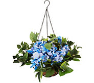 Bethlehem Lights Indoor/Outdoor Hydrangea Hanging Basket - H214598